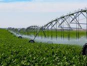 Agricultorii au nevoie de irigaţii, la vreme de secetă