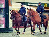 Poliţiştii călare se lasă aşteptaţi