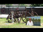 Monografii Rurale | 08.06.2017 | Biatrice Duca | Comuna Movileni | Partea 2