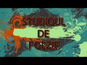 Studioul de poezie | 03.08.2017 | Adi Cristi, Nicolae Panaite, invitat Dan Bogdan Hanu