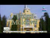 Pulsul Moldovei | 11.09.2017 | Paul Gorban, invitat Cristinel Albu | Comuna Țuțora, raport de activitate la un an de mandat