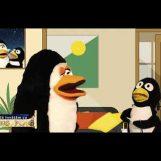 Să învățăm cu Ping și Pong | episodul 9.1