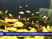 Investiţii majore la acvariul din grădina zoologică Bârlad