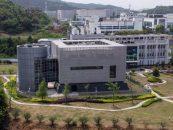 Cum ar fi putut virusul să scape din laboratorul din Wuhan
