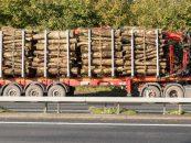 Transport ilegal de lemn la Suceava