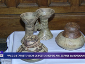 Vase și statuete vechi de peste 6000 de ani expuse la Botoșani