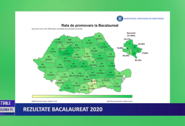Rezultate Bacalaureat 2020